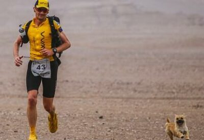Extreme Marathon Runner Reunited With Stray Dog Through Global Online Campaign
