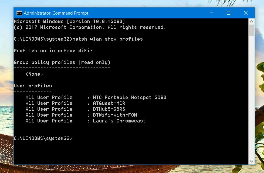 Show network profiles windows command prompt (cmd)